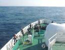 6 thuyền viên Việt Nam mất tích trên biển Hàn Quốc