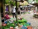 Đi chợ làng Giá, tìm nét quê xưa