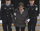 Lý do quan bà tham nhũng phải về Trung Quốc đầu thú sau 13 năm