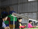 """Thưởng tết 2017: DN nông nghiệp cố mức thưởng """"coi cho được"""""""