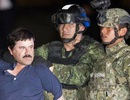 Con trai trùm ma túy Joaquin El Chapo bị bắt cóc tại Mexico
