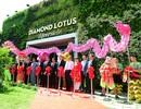 Phúc Khang khai trương tổ hợp nhà mẫu dự án Diamond Lotus Riverside