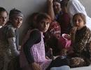 Những đứa trẻ của các chiến binh IS