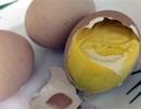 Lạ Hà thành: Trứng gà ung bồi bổ đắt khách