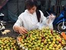 4.000 tấn mận Tàu về Việt Nam: Chị em mời nhau ăn hết