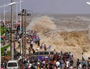 Biển người đổ xô xem thủy triều lớn nhất thế giới