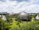 6 công trình kiến trúc của Việt Nam nhận giải thưởng kiến trúc uy tín tại Mỹ