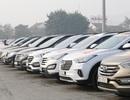 Hơn 50 xe SantaFe hội tụ mừng sinh nhật 3 năm Fe-Club