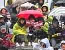 1,3 triệu người Hàn Quốc đội mưa tuyết đòi tổng thống từ chức
