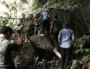 Hang ổ ẩn náu trong rừng già của nghi phạm thảm sát 4 người