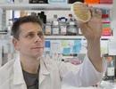 Nghiên cứu cho thấy các enzyme cần thiết để sửa chữa ADN