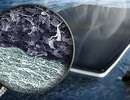 Tấm bọt sinh học làm cho nước bẩn có thể uống được