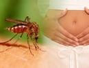 Phụ nữ từng bị nhiễm Zika, sau bao lâu mới nên có thai?