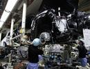 Một số nhà máy ô tô tại Nhật phải ngừng hoạt động