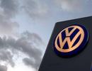 Lãnh đạo Volkswagen tại Hàn Quốc bị bắt giữ