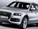 Audi triệu hồi xe A4, A5 và Q5