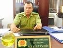 Bài 8: Kiểm lâm đề nghị huyện Sơn Động xử lý cha con chủ tịch thị trấn phá rừng