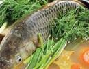 Bác sĩ nói gì nếu bạn có ý định nuốt mật cá trắm chữa bệnh?