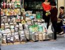 Báo động hàng chục nghìn tấn dược liệu lậu vào thị trường