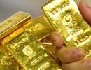 Bất ngờ nhặt được túi vàng trị giá nửa tỷ trong vườn