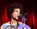 Prince đã tử vong 6 tiếng trước khi được tìm thấy trong thang máy