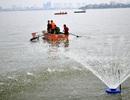 Cá chết ở Hồ Tây: Thiếu ô xy do chất thải đổ xuống hồ quá nhiều?