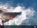"""Thợ lặn phát hoảng khi thấy cá mập """"nổi điên"""" lao vào lồng sắt"""