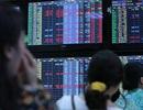 SHB chào bán 100 triệu cổ phiếu, ACB phát hành hơn 89,6 triệu cổ phiếu
