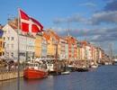 Thành lập Mạng lưới Cựu du học sinh Việt Nam - Đan Mạch
