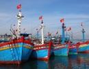 Xử nghiêm người trục lợi chính sách hỗ trợ tàu đánh bắt xa bờ