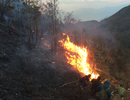 Nguy cơ cháy rừng Lào Cai tăng cao do trời hanh khô