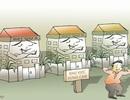 Vụ xây dựng resort trái phép ở Vườn Quốc gia Ba Vì: Luật pháp phải nghiêm minh!