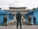 Thế giới bên trong khu du lịch nguy hiểm nhất Hàn Quốc