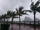 Hải Phòng, Quảng Ninh bắt đầu có mưa gió lớn