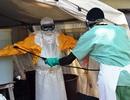 Ebola tiến hóa nhanh để lây truyền hơn và gây tử vong nhiều hơn