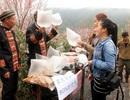 Kiếm bộn tiền nhờ bán 'không khí núi rừng' cho dân thành thị