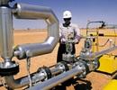 Giá dầu leo lên mức cao nhất trong 4 tháng