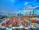Hội thảo du học Singapore: Học bổng ngành Logistics