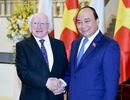 Thủ tướng hội kiến Tổng thống Ireland