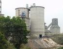 Đầu độc môi trường sống, Công ty xi măng Bắc Giang nhận án phạt