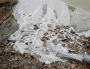 Bắc Giang: Thản nhiên gây tội ác, giết chết một dòng sông!