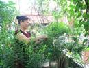 Muôn kiểu trồng rau sạch độc đáo của người Hà Nội