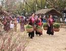 Người dân thủ đô thích thú tham quan lễ hội hoa Xuân lớn nhất miền Bắc