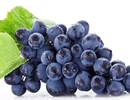 Trẻ hoá da với 3 loại thực phẩm màu tím