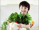 Bảo vệ sức khỏe cả gia đình trong mùa nồm ẩm
