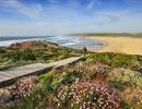 Khung cảnh mùa xuân ở đâu đẹp nhất trái đất?