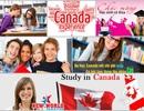 Hội thảo du học Canada - Visa ưu tiên cùng chính sách định cư 2016
