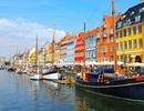 Kinh nghiệm từ Đan Mạch: Vào đại học có phải là con đường tốt nhất?