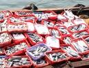 Kiểm tra lại nồng độ chất độc phenol trong cá nục