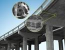 Xương và vỏ sò ốc có thể làm công thức bê tông mới